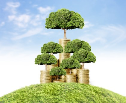 Debtor finance could be your money tree