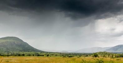 Pilanesberg 3