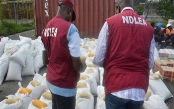 NDLEA arrests lady with multiple identities for trafficking 296,000 tabs of illicit drugs.