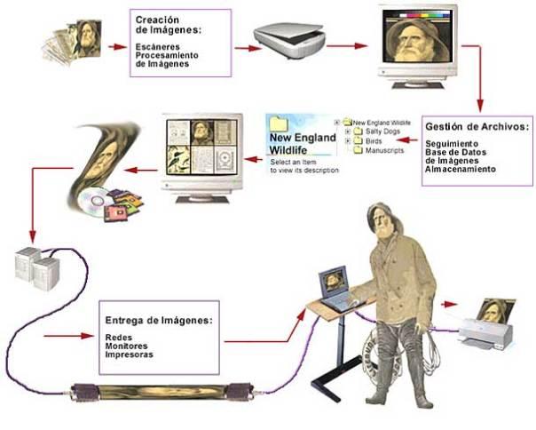 Cadena de digitalización