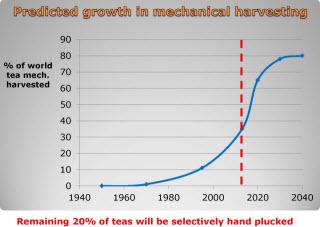 Future Adoption Mechanical Harvesting_320px