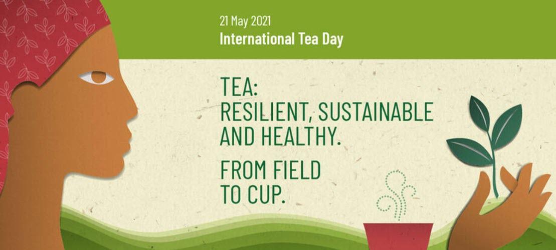 UN FAO International Tea Day