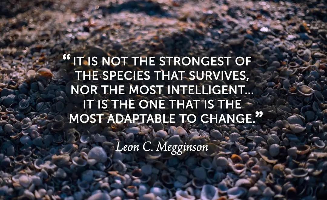 Charles Darwin, Leon Megginson, adaptable to change, adaptable, change, weeks of light