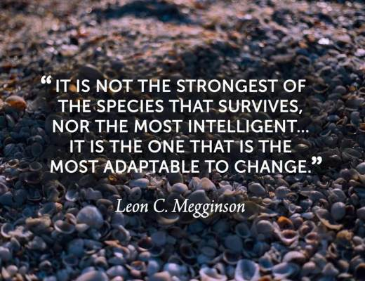Charles Darwin, Leon Megginson, adaptable to change, adaptable, change, weeks of light