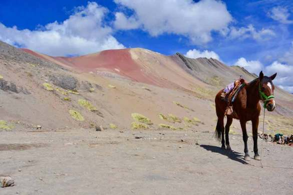 Peru, horse, fear, beauty