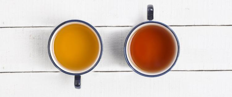 Your Complete Guide to First Flush and Second Flush Teas