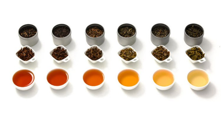 What are the different types of tea, and why you should try them?