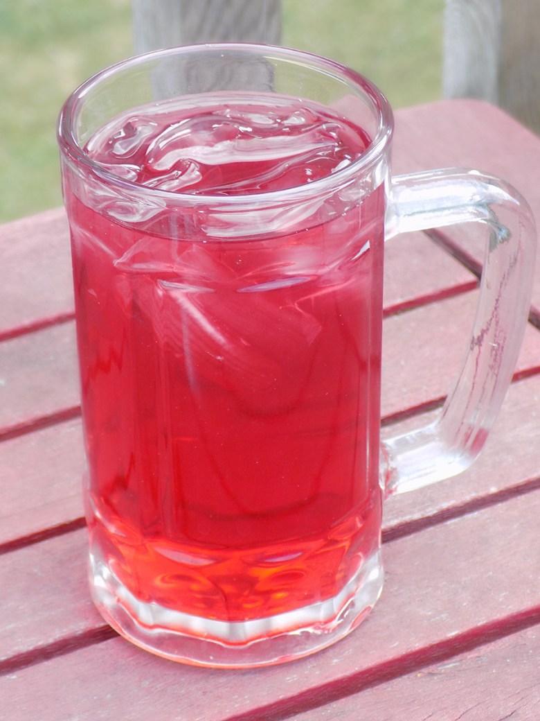 DavidsTea Raspberry Mojito Tea Loose Leaf Iced Tea Revew