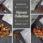 DAVIDsTEA Harvest Collection - Just Beet it - Honeycrisp Apple - Orange Glow - Wild Strawberry - Pear Blossom