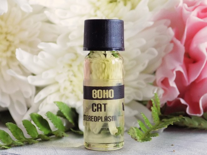 Stereoplasm Boho Cat Indie Perfume Review