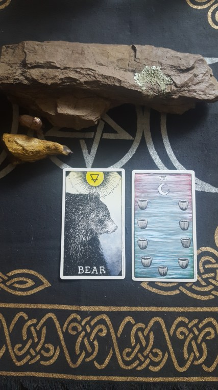 9 of Cups and the Bear