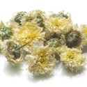 Dried Chrysanthemum Flowers