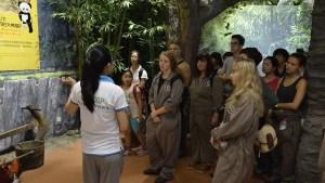 TEFL volunteers at Panda reservation