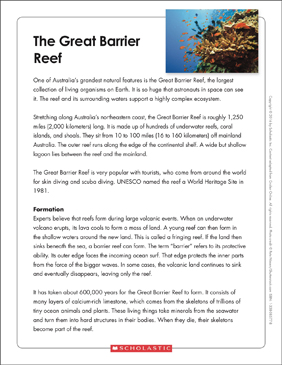 The Great Barrier Reef Text Amp Organizer