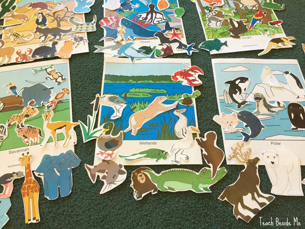 Aquarium Trip Amp Animal Habitats Sorting Mats