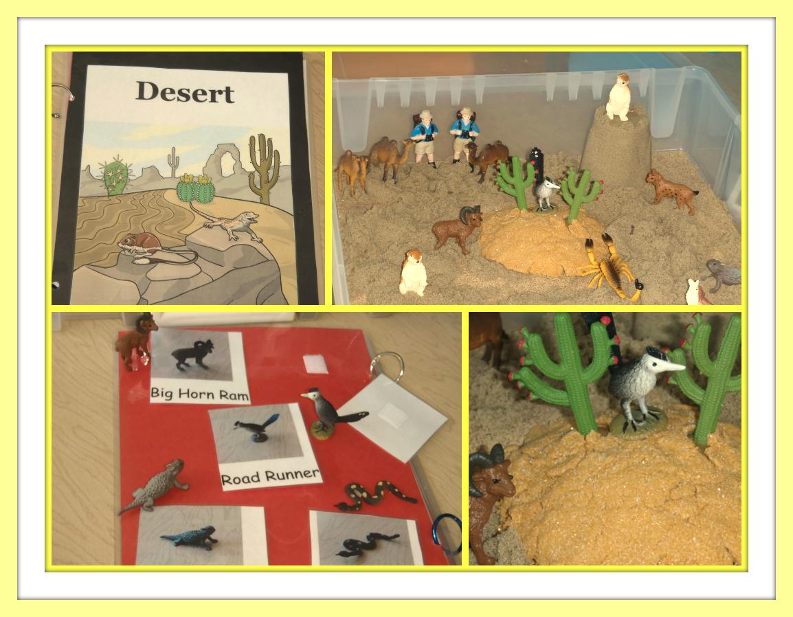 Desert Theme Ideas Teacheachone
