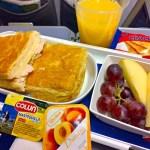 【LATAMチリ航空機内食・搭乗記】LA843/SCL-IPC/サンティアゴ-イースター島