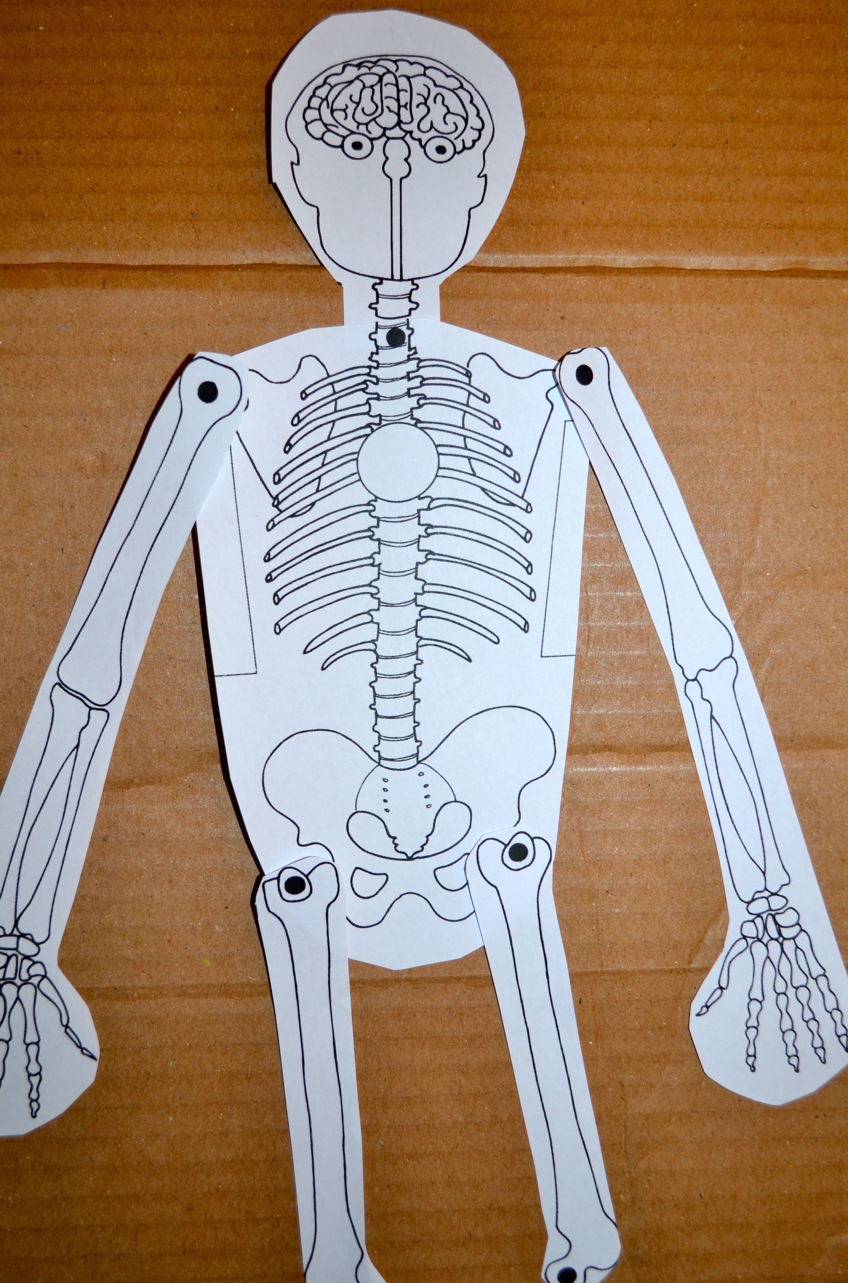 Halloween Activities And Ideas For Your Classroom The Joy Of Teaching