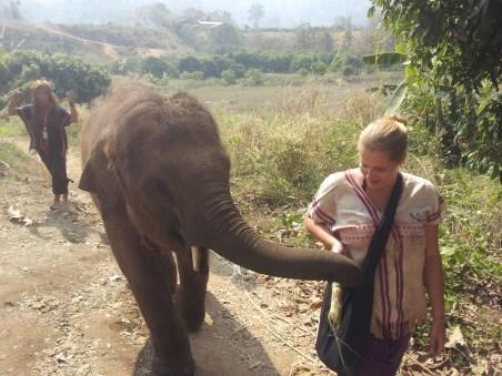 Happy Elephant Home