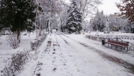 Irina Lavrova - another frozen Lepster!