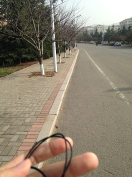 mynewlife.1900 - in China walking to the library while listening