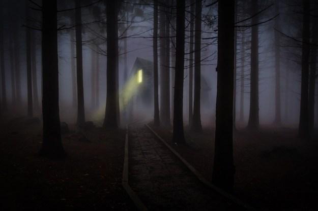 Foggy forest house