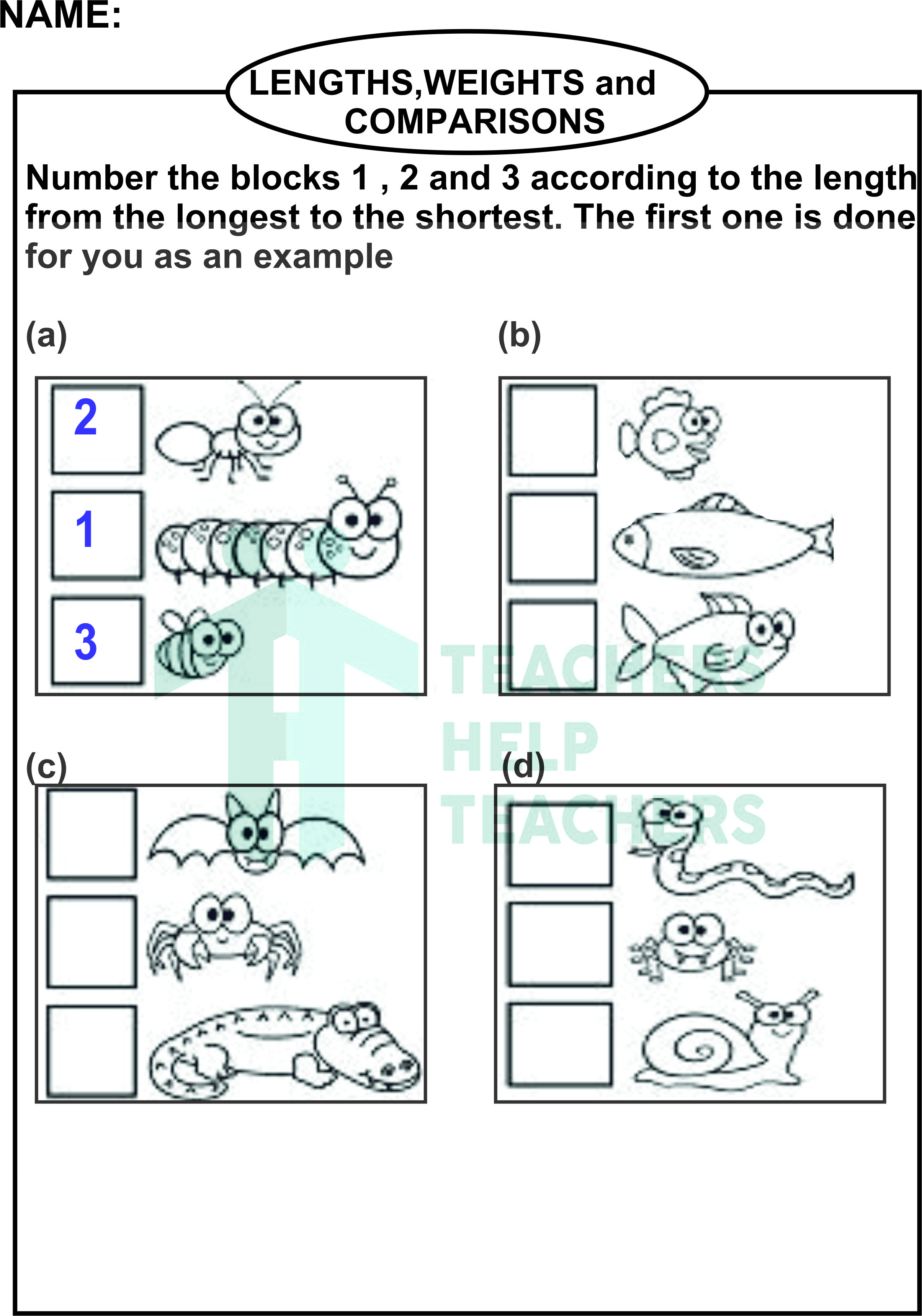 Worksheet On Length