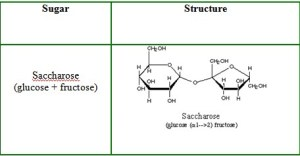 090305: Sweet Science: How Sugar Molecules Are