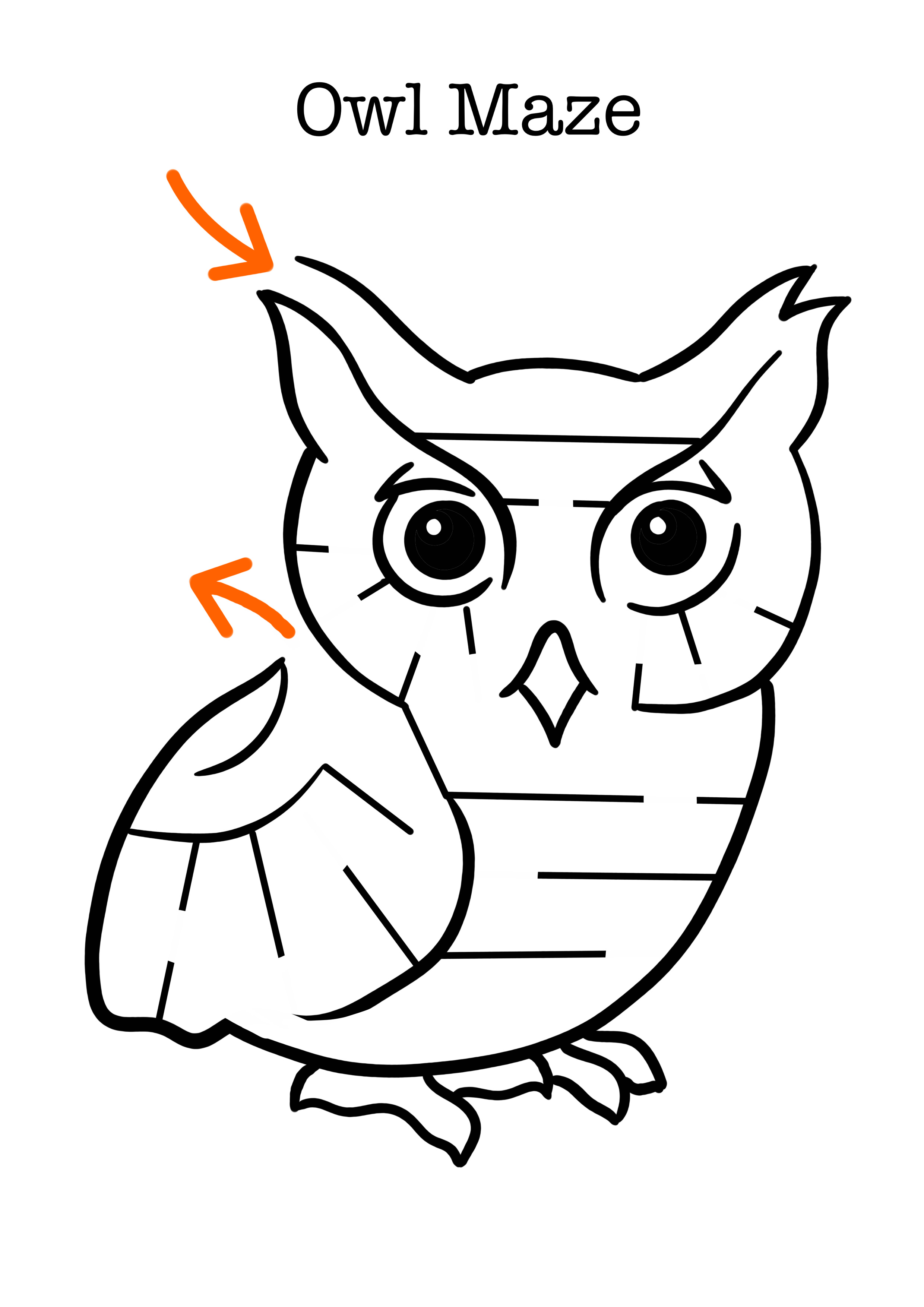 Owl Craft For Preschool Students