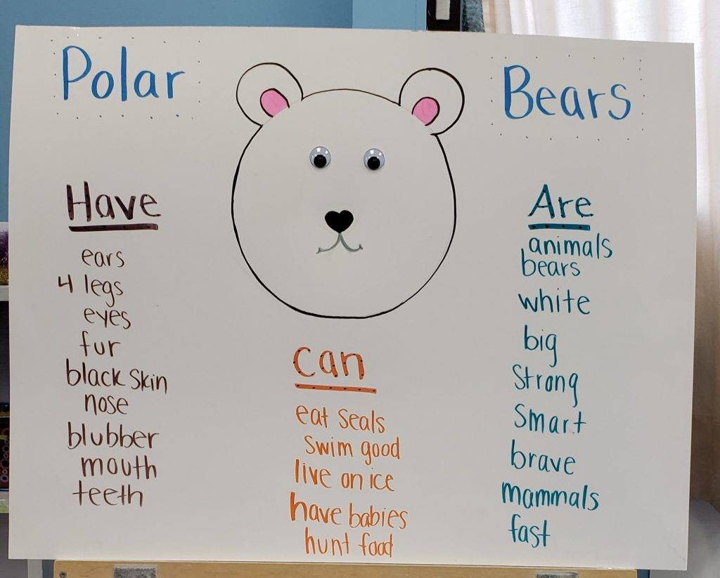 Learning About Polar Bears With A Can Have Are Chart