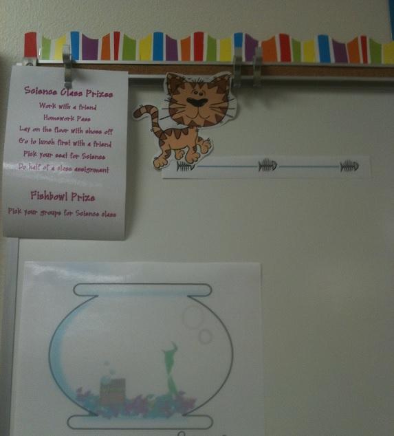 classroom behavior system