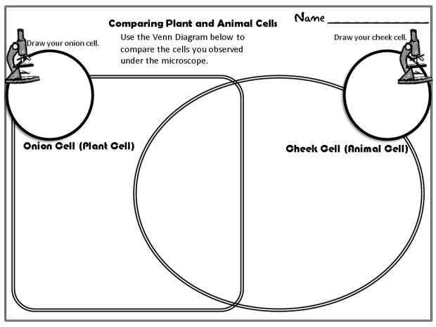 Comparing Cells Venn