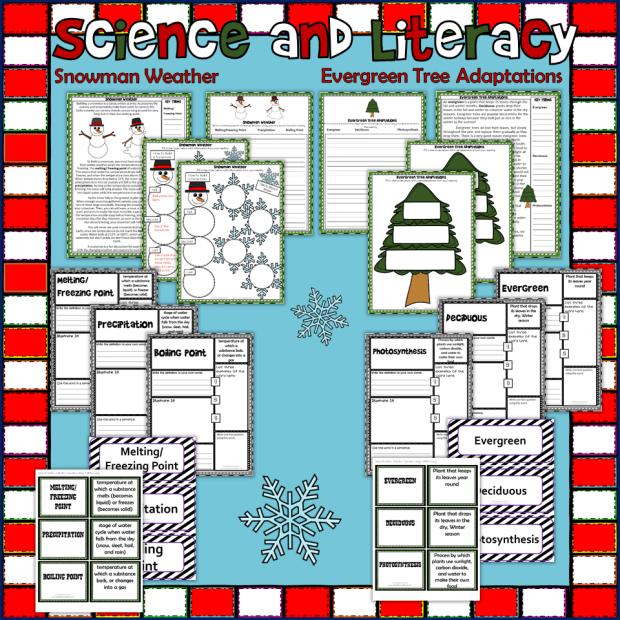 Winter Christmas Science Pack Thumb3.png