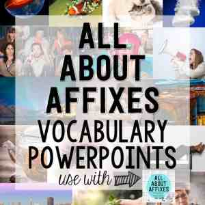 prefixed and suffixes