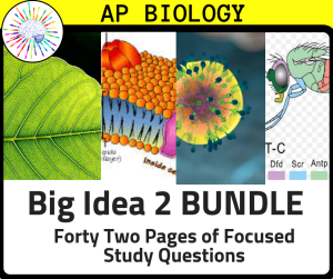 Study and Review questions aligned to each AP Biology Enduring Understanding