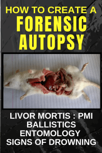 Teach Forensic Science! How to create a Forensic Autopsy for your students.