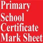 Primary School Certificate Mark Sheet 2018 2