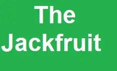 Write A Paragraph: The Jackfruit 1