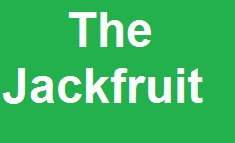 The Jackfruit