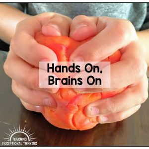 Hands on, brains on! Encourage active learning with some fun hands on activities. Make your own play dough with this easy play dough recipe. DIY playdough is great for a fun sensory activity for kids. Perfect for a rainy day activity for kids! #playdough #playdoughrecipe #DIYplaydough #sensoryplay #playdoughmats