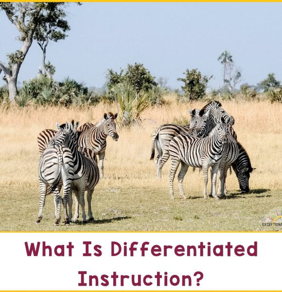 What Is Differentiated Instruction and Why Is It Important?