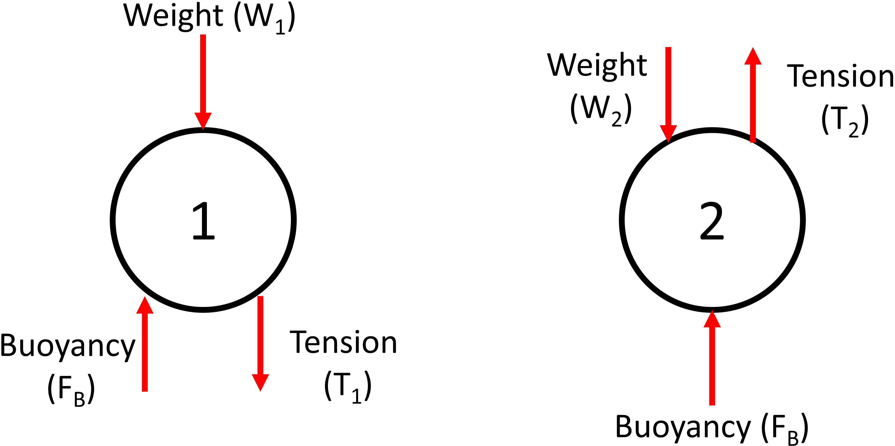 Buoyancy Balancing Ping Pong Balls