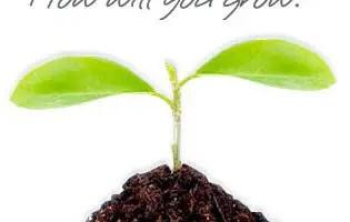 Professional Development for ESL Teachers- Start Your Own Website