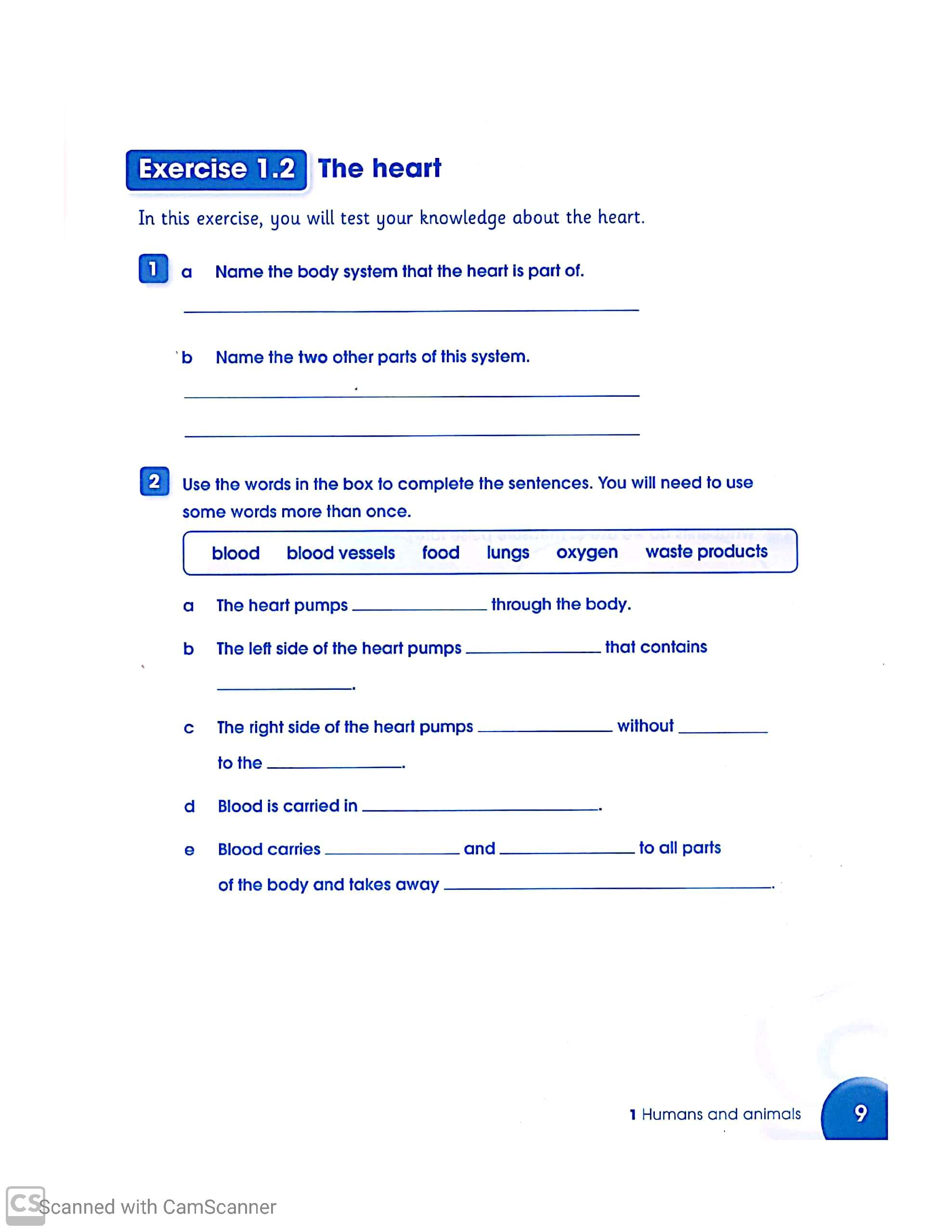 Science Worksheets For Grade 6 Teaching Kids To Read And