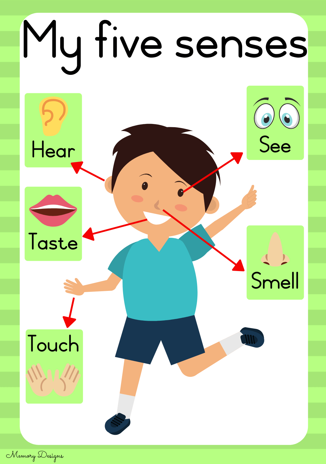 My 5 Senses Teacha