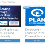 Summer Courses 2021 banner