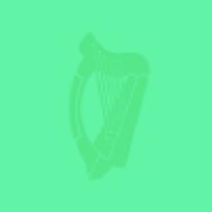 Irish Politics – Polatíocht na hÉireann