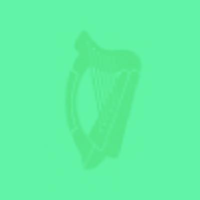 Irish Politics - Polatíocht na hÉireann