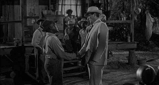 Arguments that To Kill a Mockingbird is racist