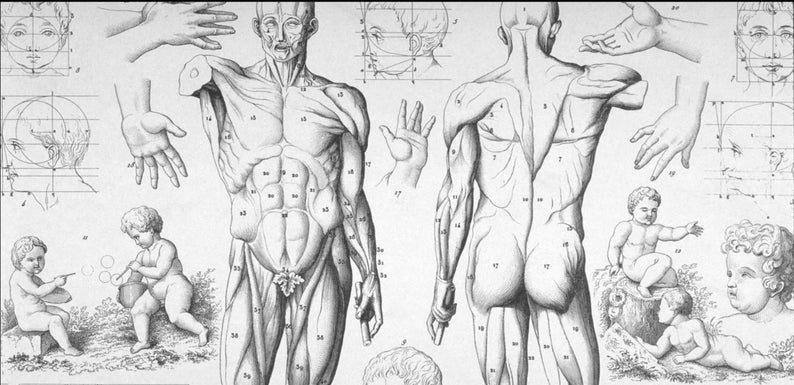 Frankenstein unit plan image 1
